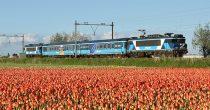 Iedere week vertrekt de Dinner Train uit een andere stad en verrassen we onze passagiers met een heerlijk menu terwijl de trein zacht wiegend door het Nederlandse landschap snelt.